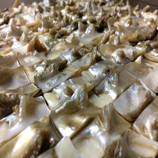 "Iridescent Mother of Pearl Tile Backsplash 3D Rectangle Shell Mosaic Bathroom Wall Tiles (Tile Size: 3/5"" x 1-1/6"" x 5/16"")"